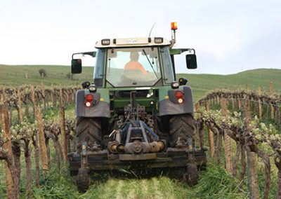 Mowing Vineyards 02